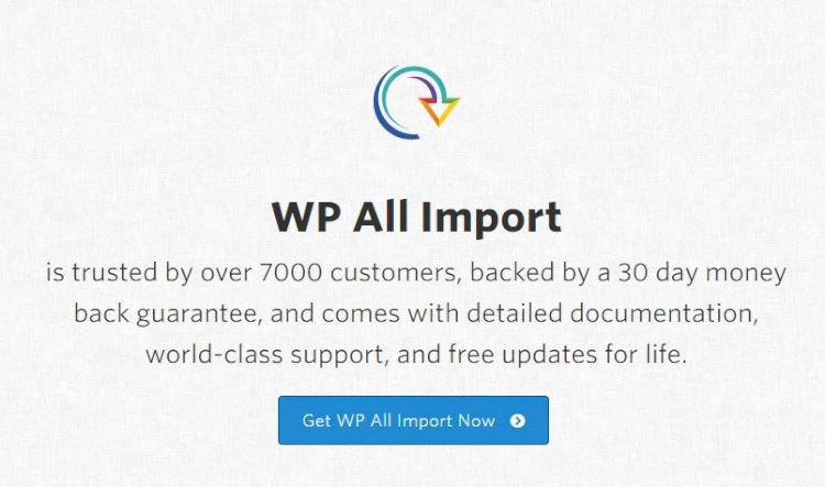 WP All Import Pro v4.6.5