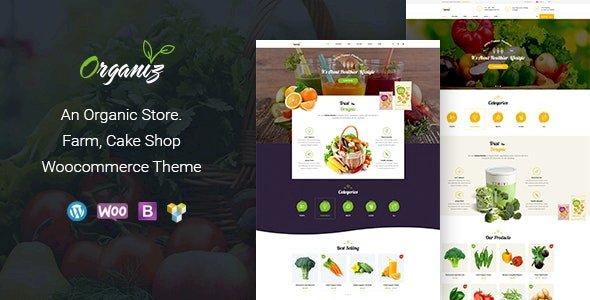Organiz – An Organic Store WooCommerce Theme 2.2