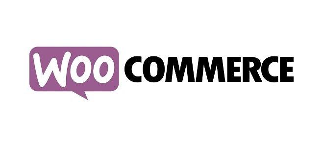 WooCommerce Google Product Feed v10.0.4