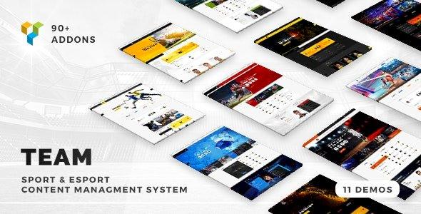 Team – Soccer, Football, Hockey, Basketball Club & eSport Gaming WordPress Theme v5.0.17